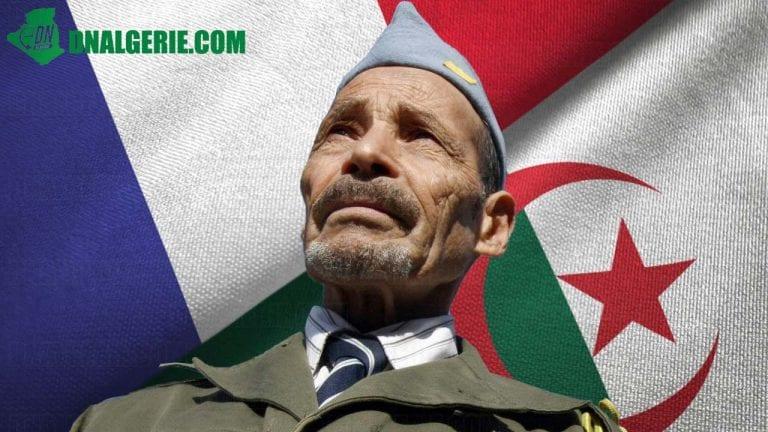 Guerre d'Algérie et dossier de mémoire : les Harkis montent au créneau en France