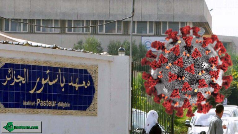 Variant indien du coronavirus en Algérie : l'Institut Pasteur précise