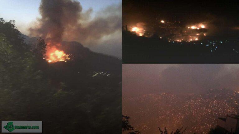 Dnalgerie lance une cagnotte pour les victimes des feux de forêt en Kabylie